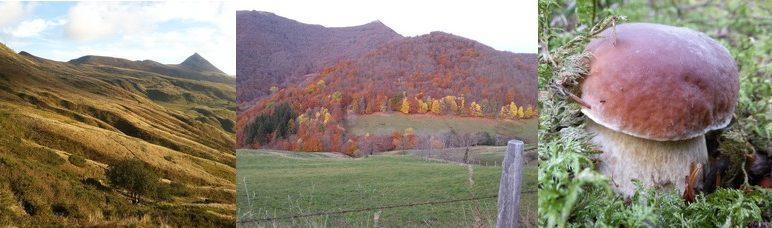Séjour à l'Enclos du Puy Mary à l'automne