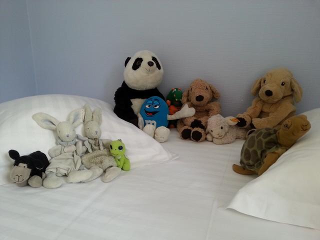 Les doudous en séjour l'Enclos du Puy Mary