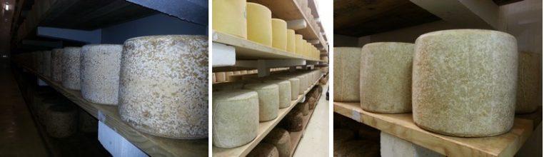 Cave à fromage de Cantal